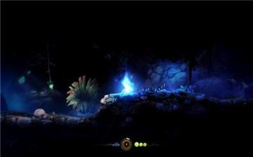 奥日和黑暗森林进入控制台方法