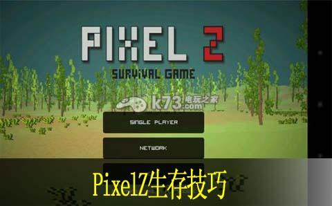pixelz生存技巧