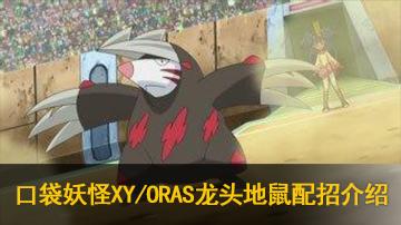 口袋妖怪XY/ORAS龙头地鼠性格配招用法介绍
