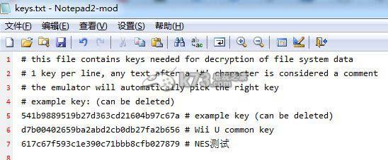 Decrypt Wiiu