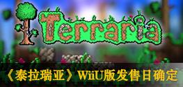 《泰拉瑞亚》WiiU版发售日确定