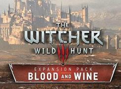 巫师3血与酒剑油bug分享