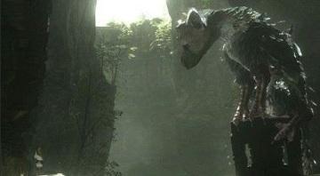 最后的守护者大鹫不吃食物桶怎么办