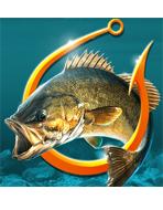 鱼钩鲈鱼锦标赛
