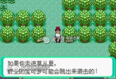口袋妖怪绿宝石中文版,口袋妖怪绿宝石汉化版