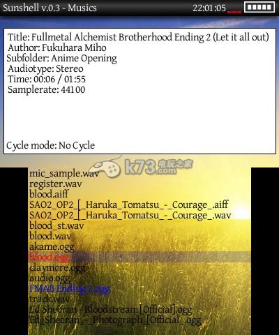 3ds自制操作软件Sunshell v.0.2 BETA 下载 截图