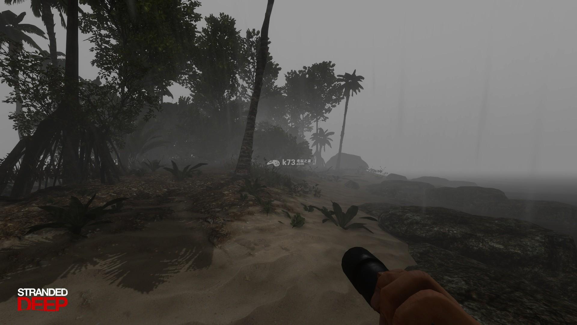 飞机失事后的荒岛上