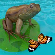 青蛙的生活手游 v2.0 安卓版下载