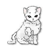 猫和纸箱ios官方下载v1.0