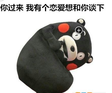 520熊本熊告白表情包 下载图片
