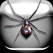 蜘蛛恶作剧app v1.0 苹果版下载