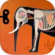 tinybop哺乳动物下载