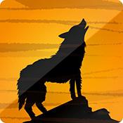夜狼 app下载