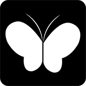 虎碟直播app下载v1.1