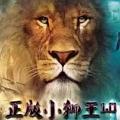 狮王5.0授权码破解版