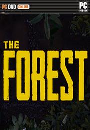 森林 未加密版下载