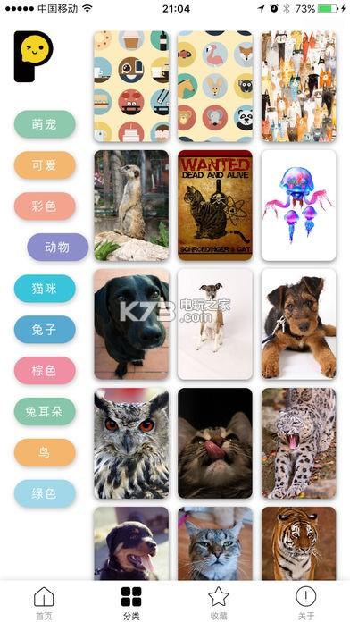 手机壁纸 v1.1.0 app下载 截图