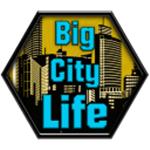 大城市的生活模拟器 v1.0.8 下载