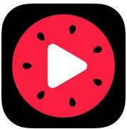百万英雄app下载v2.2.6