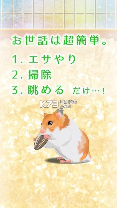 游戏截图 游戏介绍: 《治愈仓鼠养成》让玩家在q版画面下养成可爱仓鼠