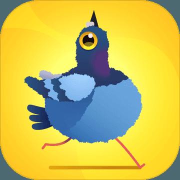 pigeon pop下载