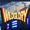 Wild Glory手游下载v1.0