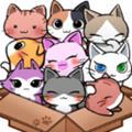 可爱猫咪护理中文版下载v1.0.21