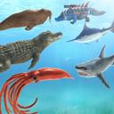 海洋战斗模拟器游戏下载