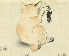 猫咪地盘之战手游下载预约