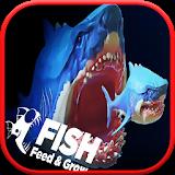 饲料和成长鲨鱼 v1.0 游戏下载