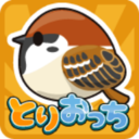 小鸟观察器汉化版下载v3.1.8