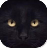 黑猫睁眼动态锁屏ios版下载