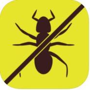 没有更多的蚂蚁游戏下载