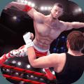 WWE狂暴摔跤游戏下载v1.0