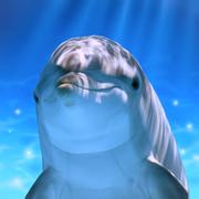 点击移动海豚 v1.0 下载