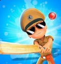小辛格姆板球游戏下载