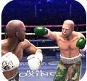 真實拳擊2019 v1.0 手游下載