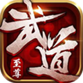 武道至尊 v1.0.0 变态版下载