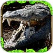 真正的鳄鱼模拟器下载v1.0.0