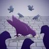 公園飼鴿游戲下載v1.0