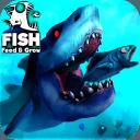 饲料和成长鱼 v1.1 手机版