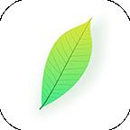 青叶看点app下载v1.0