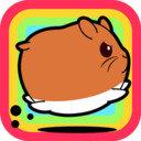 仓鼠农场游戏下载v1.0.3
