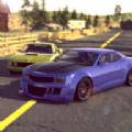 肌肉拉力赛 v1.1 游戏下载