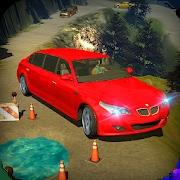 豪华轿车司机游戏下载v1.0