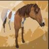 动物画家3D游戏下载v1.0