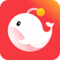 灯遇交友app下载v0.3.0.1016