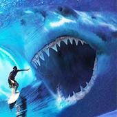 猎鲨3d游戏下载v1.7