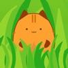猫记忆训练师 v1.0.2 手游下载