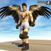 飛鷹英雄模擬器2020游戲v1